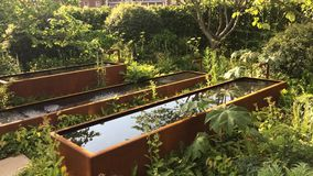 Water in de tuin in Chelsea Flower Show in Londen stock video