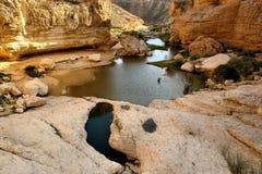Water in de woestijn stock fotografie