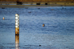 Free Water Depth Indicator Stock Photography - 87346452