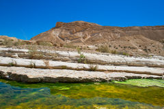 Water in the desert of Negev Royalty Free Stock Images