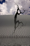 Water in desert with tree Stock Images