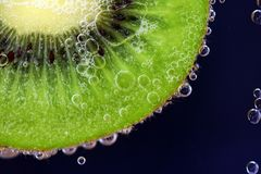 Water, Dew, Macro Photography, Close Up Royalty Free Stock Photo