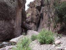 Water die een canion in de woestijn doornemen stock footage