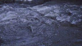 Water die en in rivier met goed geluid stromen drijven stock footage