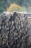 Water die gesneden boomstammen in een zaagmolen, Frankrijk bespuiten royalty-vrije stock afbeeldingen