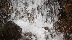 Water die, kleine boscascade dicht omhoog vallen stock videobeelden