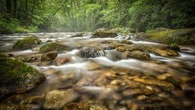 Water die in kreek van Noord-Carolina lopen stock afbeelding