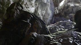 Water die op een Speleothem in het Hol druipen stock videobeelden
