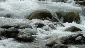 water die over de stenen stromen stock video
