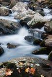 Water die over keien in Duifkreek stromen in de Rokerige Bergen royalty-vrije stock foto