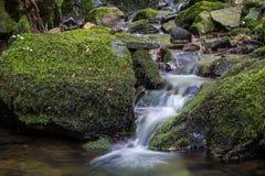 Water die over mos-behandelde rotsen stromen Stock Afbeeldingen