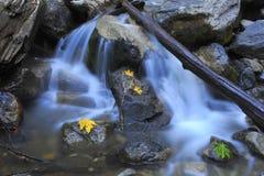 Water die over rotsen kleurrijke bladeren meeslepen, yosemite dalingen, Californië Stock Foto