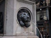 Water die uit lion& x27 komen; s mond Stock Foto's