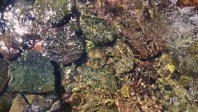 Water die van de berglente lopen Kristalclea stock footage