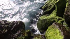 Water die zich constant in en uit de kustkusten van de vreedzame oceaan bewegen stock video
