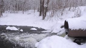 Water discharge pipe platinum in winter forest, stream of water from melting snow, trees covered with snow. stock video