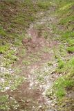 Water in a Ditch. Water in a muddy ditch Stock Image