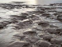 Water doorweekte moddervlakten royalty-vrije stock afbeeldingen