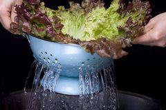 Water draining from a colander. Stock Image