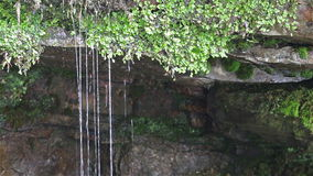 Water Dripping Off Rockface stock footage
