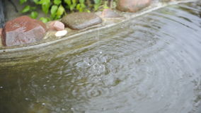 Water Dripping from the Roof Eave into the Pond stock video footage