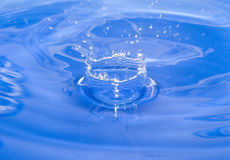Water drop. Ripples on a surface of water from falling a drop Royalty Free Stock Photo