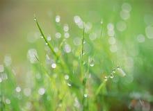 Water Drop. Image Stock Photos