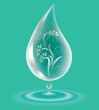 Water-drop. Royalty Free Stock Photos