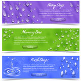 Water Drop Banner Set. Water dew and falling drops horizontal banner set isolated vector illustration Royalty Free Stock Photography