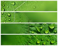 Water Drop Banners Stock Photography