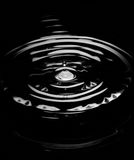 Water Drop. On a black background stock photo