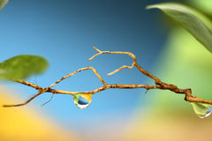 Water drop, bright colors Stock Images