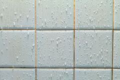 Water drop on ceramic tile wall  background.  Royalty Free Stock Photos