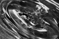 Water drop close up. On teflon background royalty free stock photography