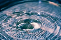Water, Drop, Close Up, Water Resources royalty free stock photos