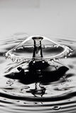 Water drop collision Royalty Free Stock Photo