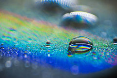 Water drop. On compact disc CD Royalty Free Stock Images