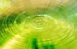 Water drop. Dew dropping on water Royalty Free Stock Image