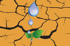 Water drop on dry cracked ground texture. Illustration Vector EPS 10 Stock Image