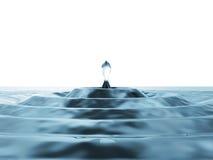 Water Drop Falling Royalty Free Stock Image