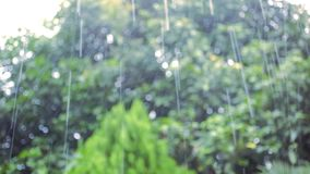Water drop falling from the roof. Video shift. Water drop falling from the roof. Video stock footage