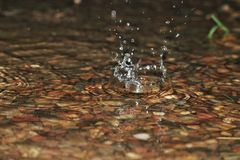 Water drop. Drop of water falls in puddle during rain stock photos