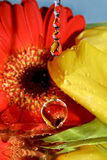 Water drop and flowers. Detail of a top falling in front of yellow and red flowers royalty free stock image
