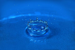 Water Drop forming Crown Royalty Free Stock Image
