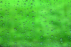 Water drop on green Royalty Free Stock Image