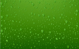 Water Drop On Green Background Stock Image