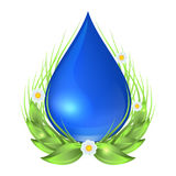 Water drop with green leaves, flowers and grass. Ecology vector illustration isolated on white background. Water drop with green leaves, flowers and grass Royalty Free Stock Image