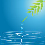 Water drop and leaf Royalty Free Stock Images