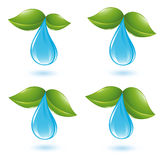 Water drop with leafs Royalty Free Stock Photos
