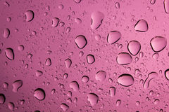 Water drop on pink background. Royalty Free Stock Images
